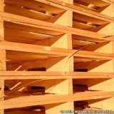 pallet madeira exportação Paraíso